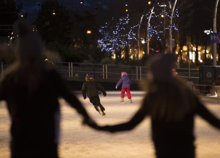 Stuart Park Ice Skating Holding Hands