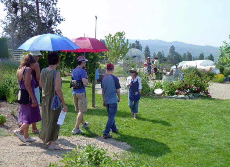 Tour Start at Lavender Farm