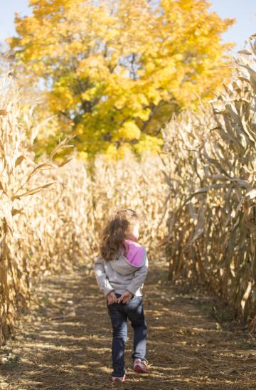Hannah Stolling through the Corn Maze