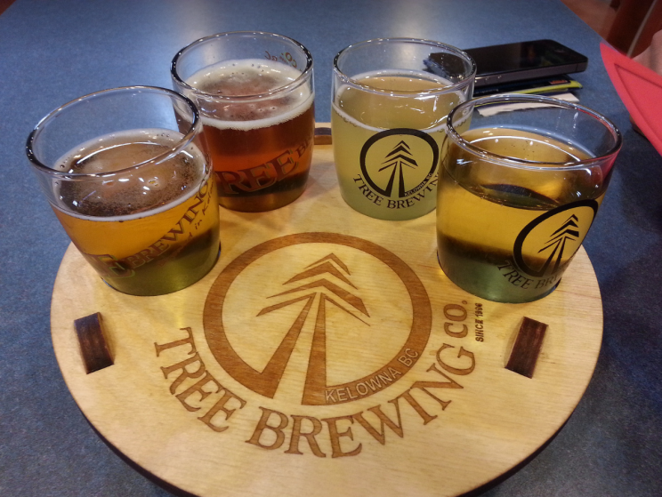 Flight of Beer | Tree Brewing
