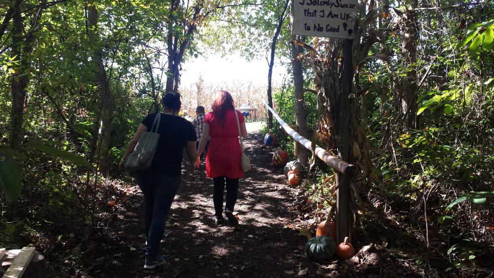 Path to the Corn Maze at Greendell Landscape Solutions