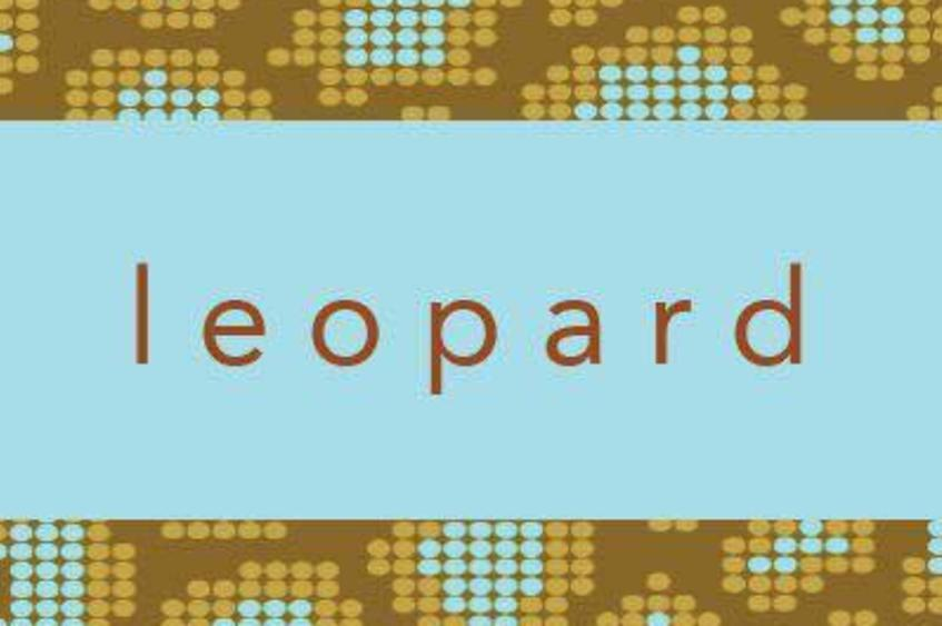 Leopard Boutique