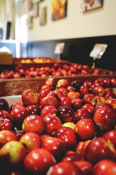 BC Tree Fruits Market