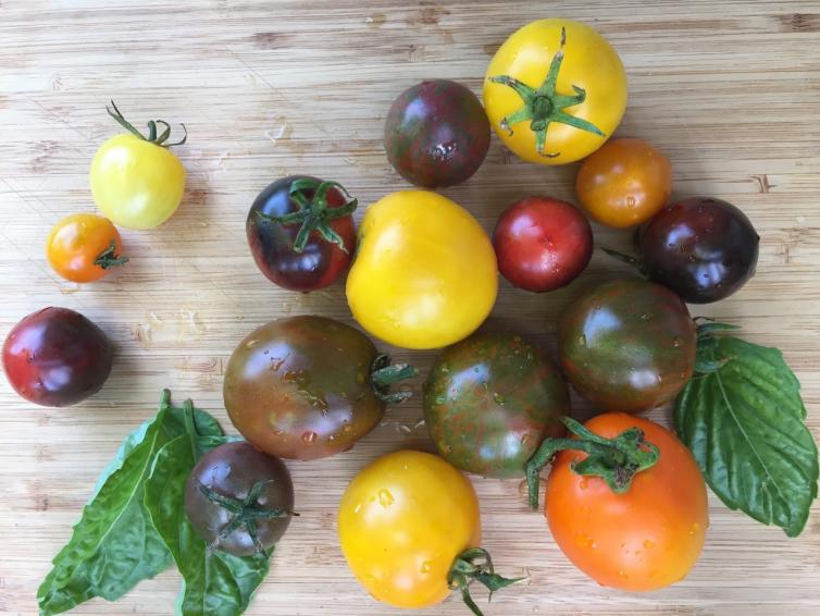 Sunshine Farms Heirloom Tomatoes
