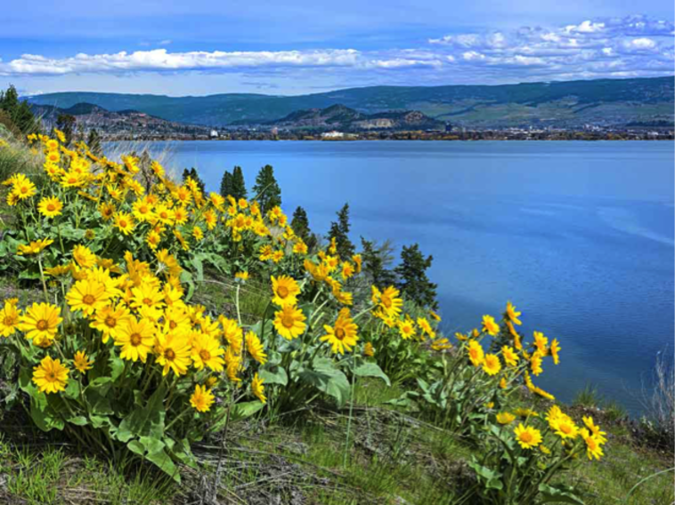 Kelowna's Secluded Beaches