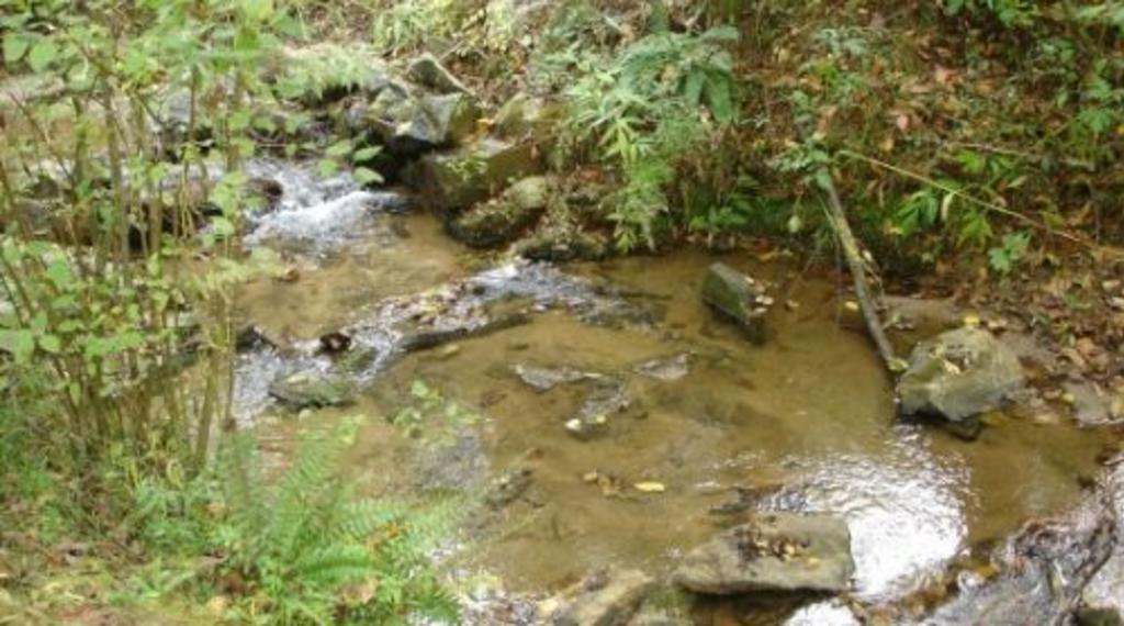 188Saxton_creek.jpg