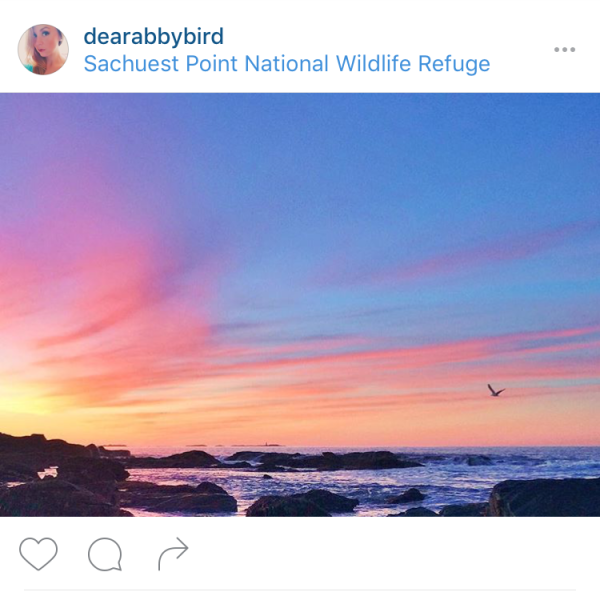 Insta Photos - dearabbybird