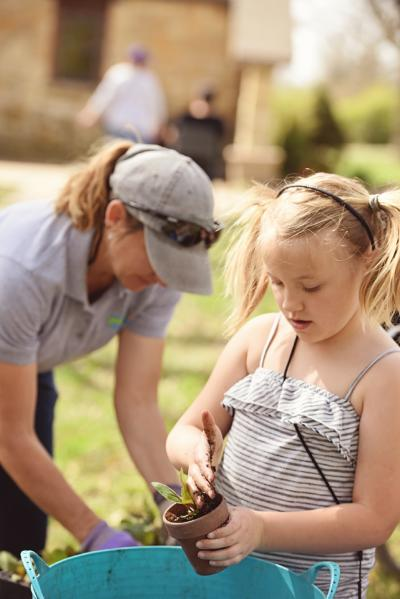 young girl, with blonde pigtails, pots a plant.