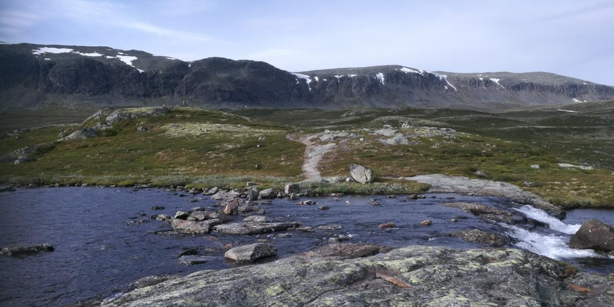 Øvre Eitretjørn, Ål i Hallingdal