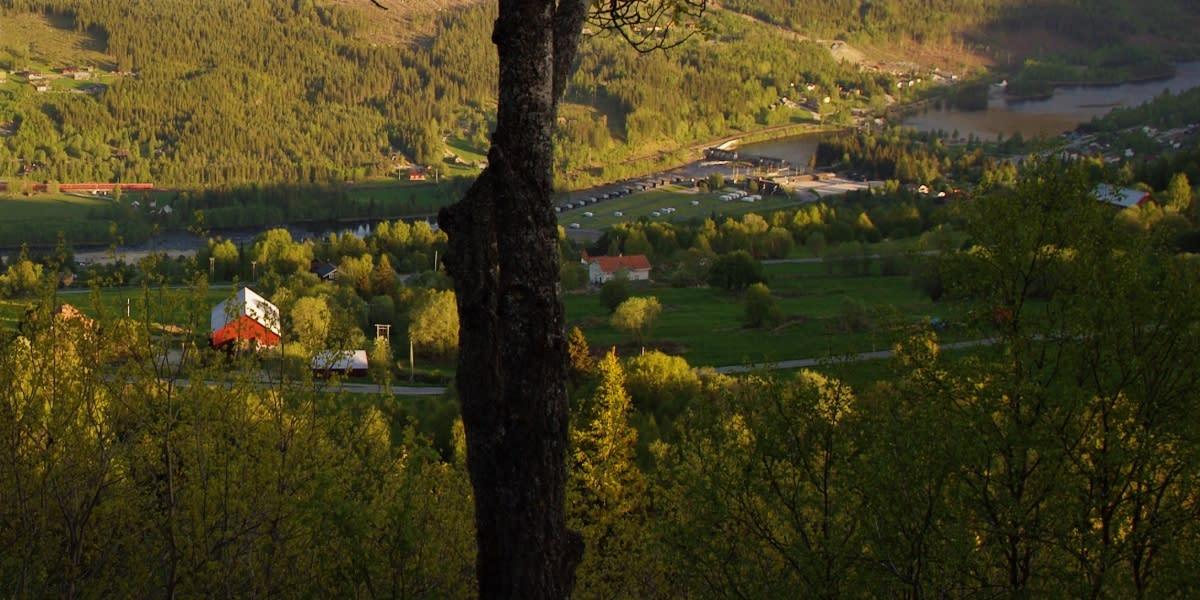Hellingstølen, Ål i Hallingdal