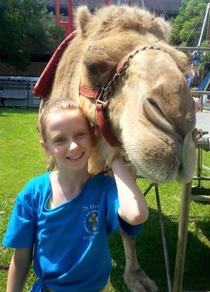 Mediterranean Festival camel rides