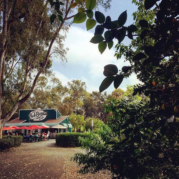 Park Bench Cafe by @kfennimore