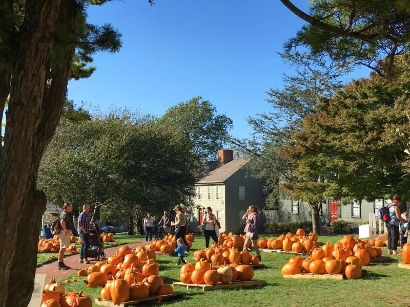 Trinity Church Pumpkin Patch