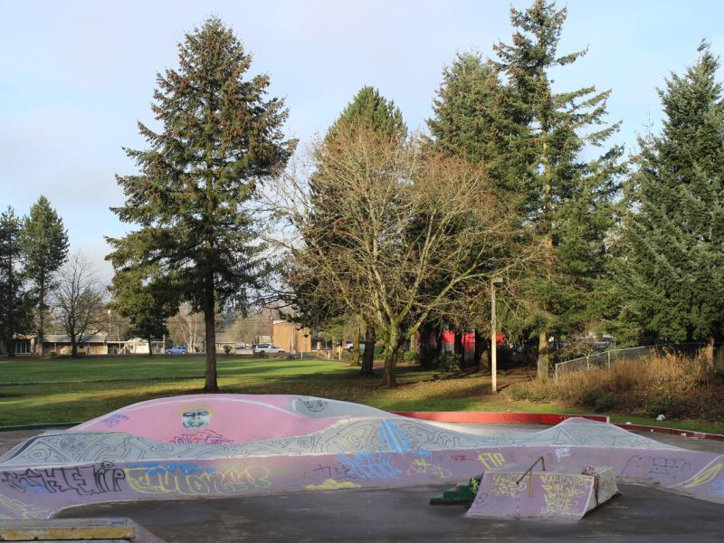 Swift Skatepark