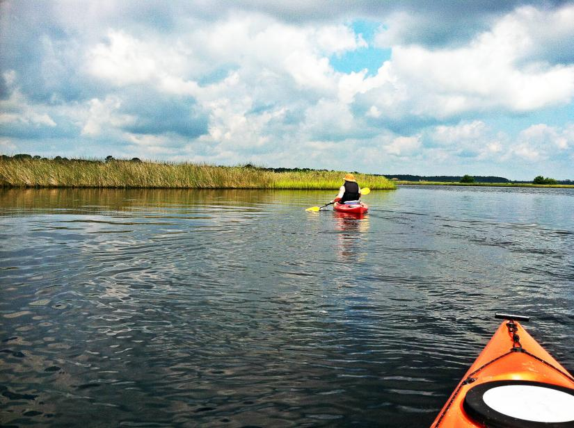 Kayaking Tomoka River Basin