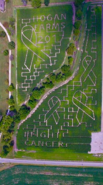 The Corn Maze theme at Hogan Farms 2017 is Cancer Awareness