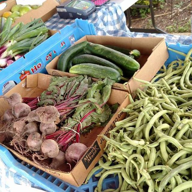 Fresh local veggies & produce