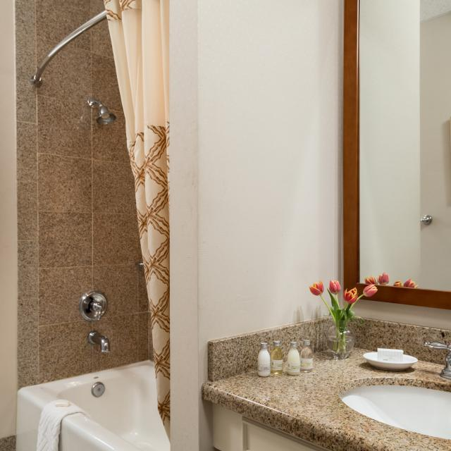 Spa-style granite bathrooms
