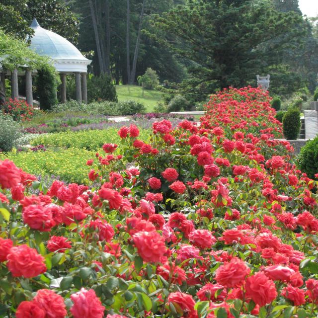 Maymont Richmond Garden Trail