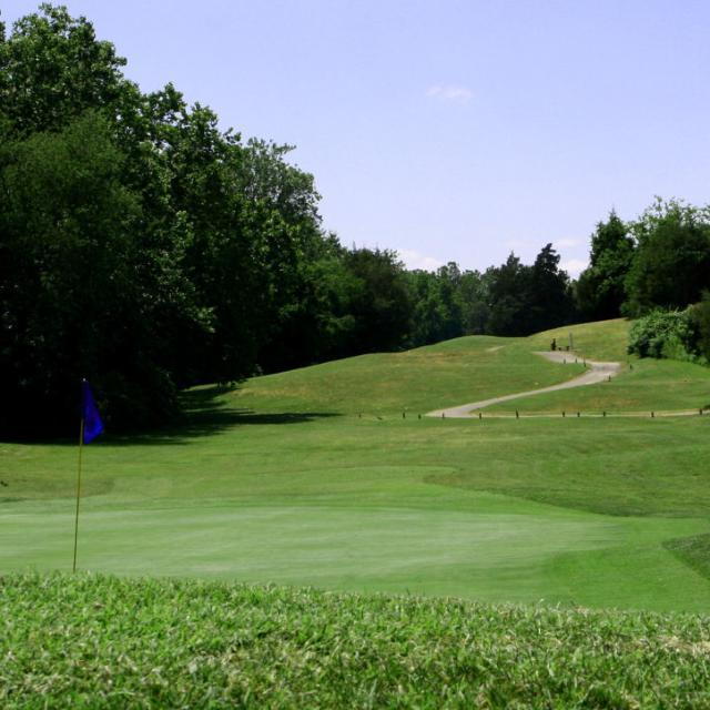 NEW Sycamore Golf