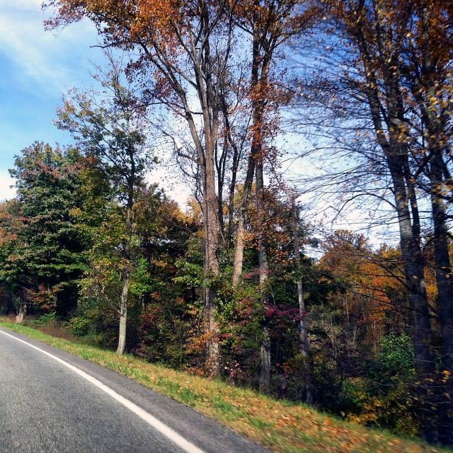Scenic Drive - Fall Photo