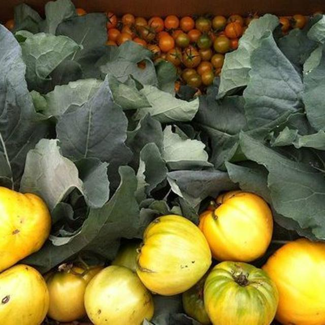 NEW Goochland Rural Market