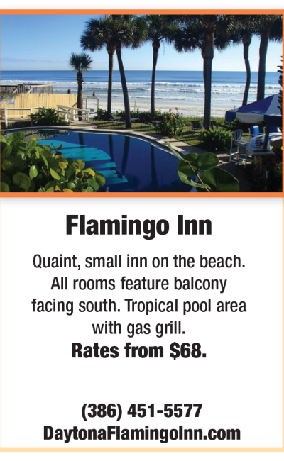 Flamingo Inn Fall Newsletter