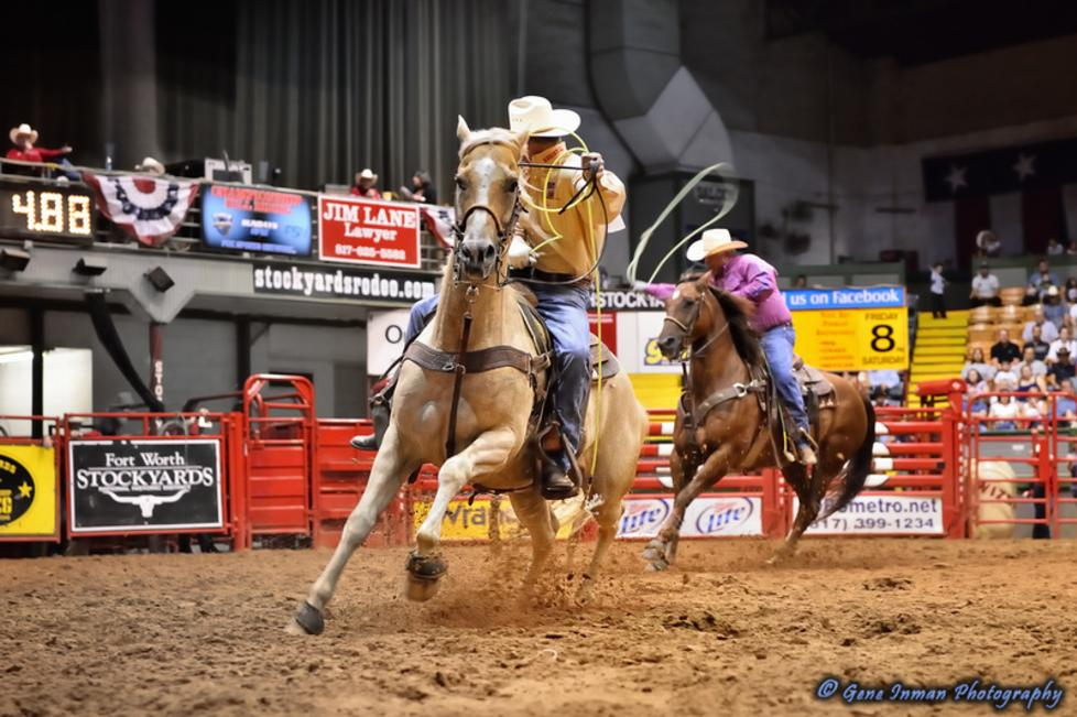 Rodeo - Team Roping