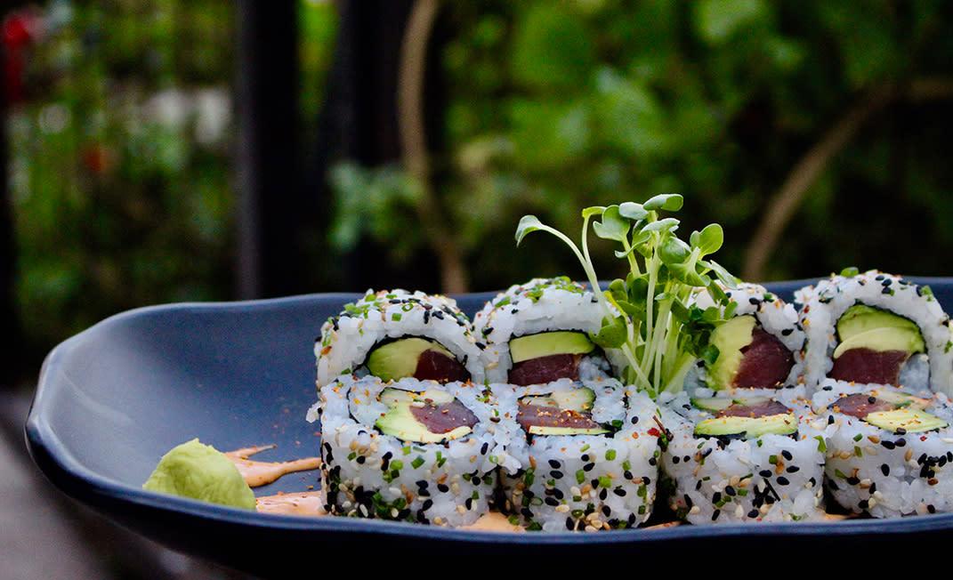 Sushi in Scottsdale Buck Rider - Body