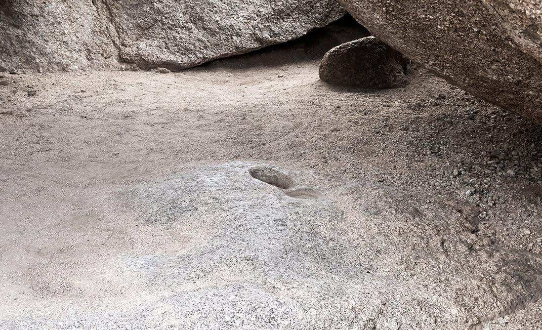 5 Surprises on Scottsdale Trails