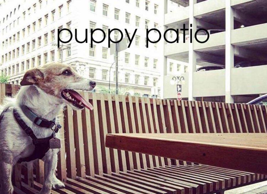 Puppy Patio at Forth