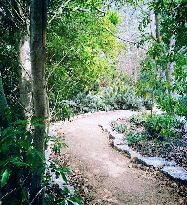 Central Park by @rnhatcher