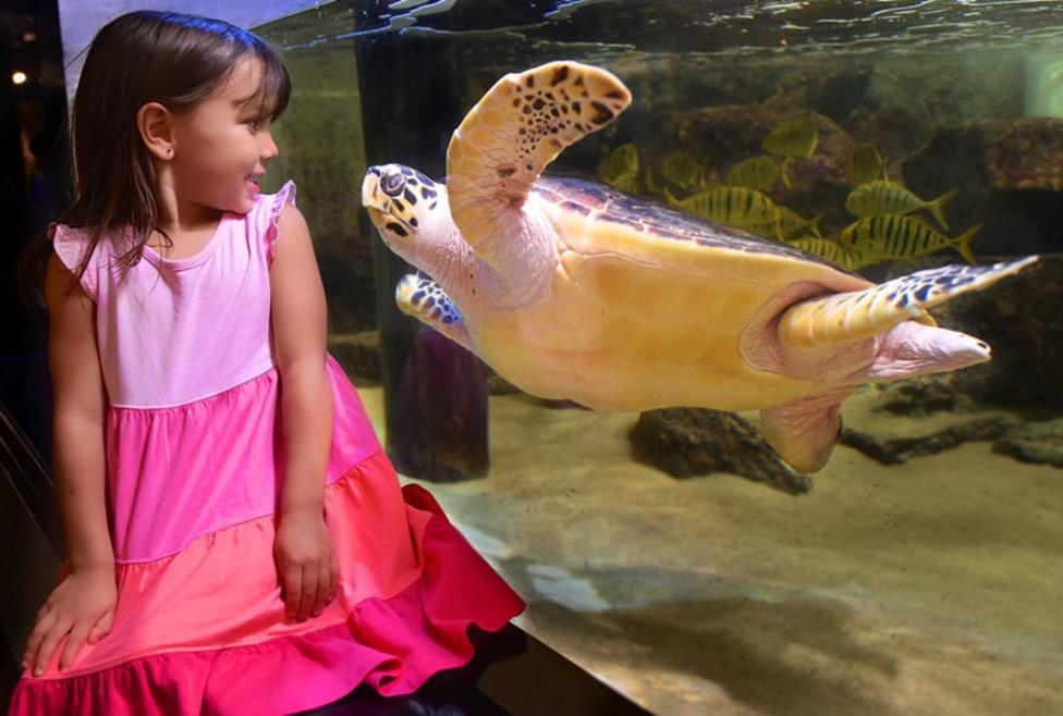 Children's Aquarium at Fair Park