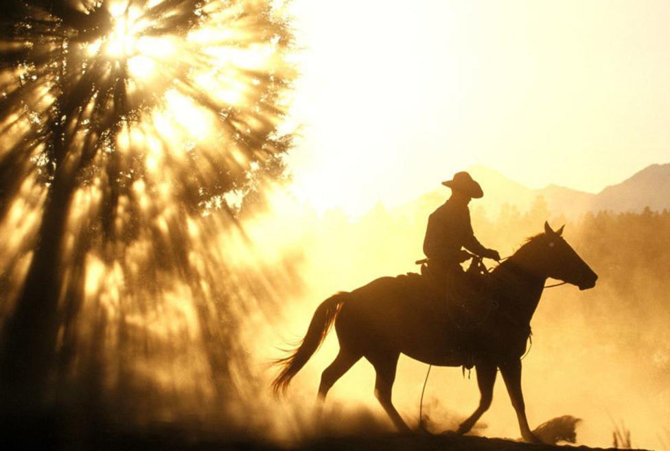 Austin Ranch Cowboy
