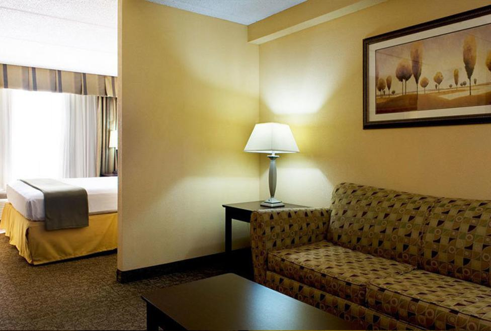 Holiday Inn Express Hotel & Suites - DFW Airport South - Suite