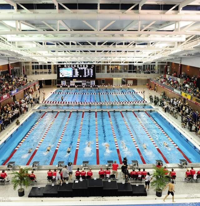 Division I Women's Swimming and Diving Championships