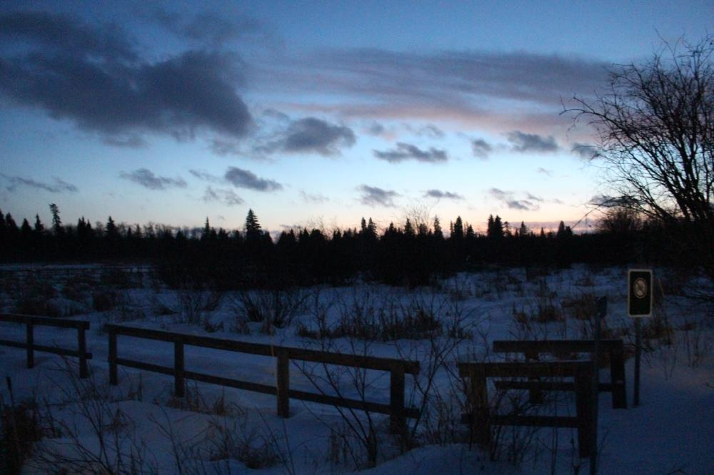sunset over trees in Riding Mountain National Park