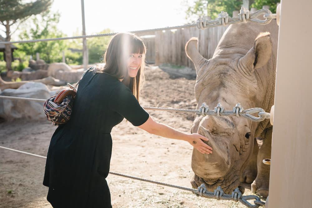 Petting a Rhino at Utah's Hogle Zoo