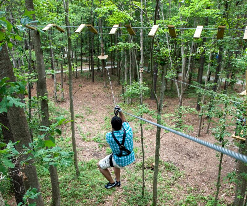 Located in the majestic trees of the aquarium, between the Marsh Pavilion and the Bay and Ocean Pavilion, you will find an amazing aerial forest adventure park. With 13 trails with difficulties ranging from beginner to expert, visitors can challenge themselves on individual or team levels.Virginia Tourism Corporation, www.Virginia.org