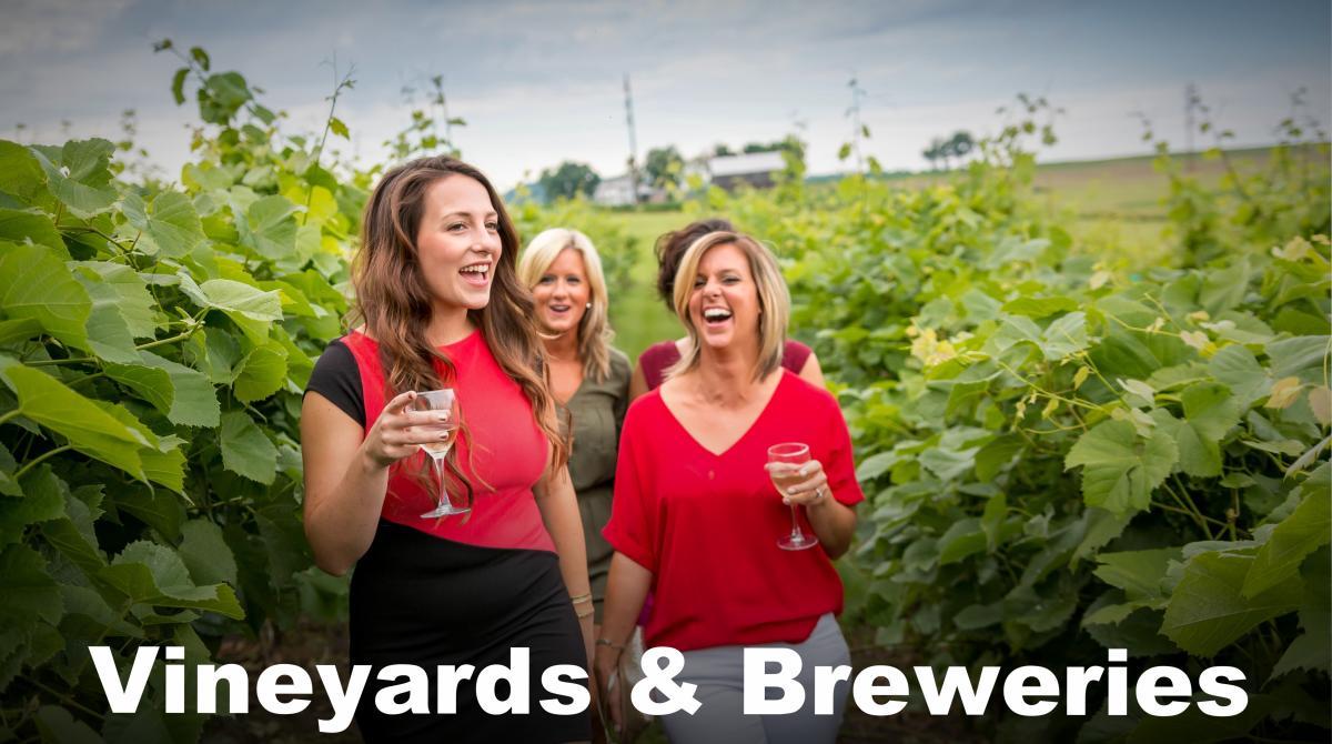 Vineyards & Breweries