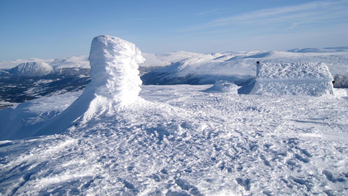 Storhornet 1589 moh