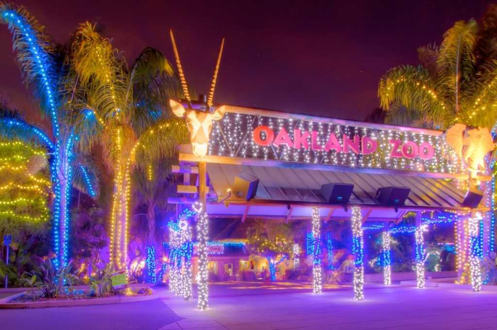 Zoo Lights Entrance