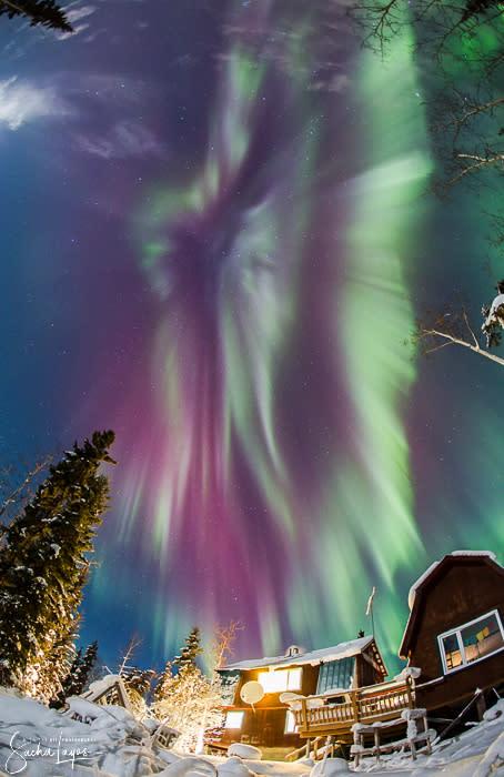 Nature's Fireworks - Sacha Layos of Midnight Oil Photography - Fairbanks Alaska