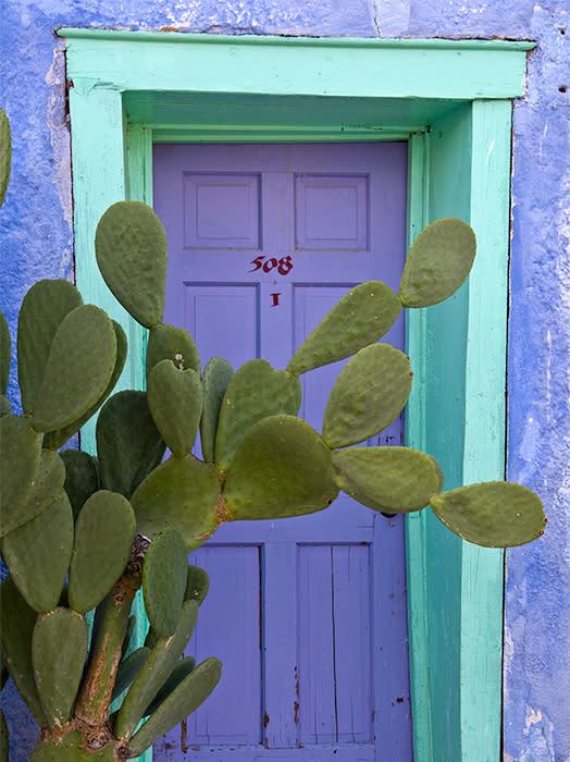 El Charro Door