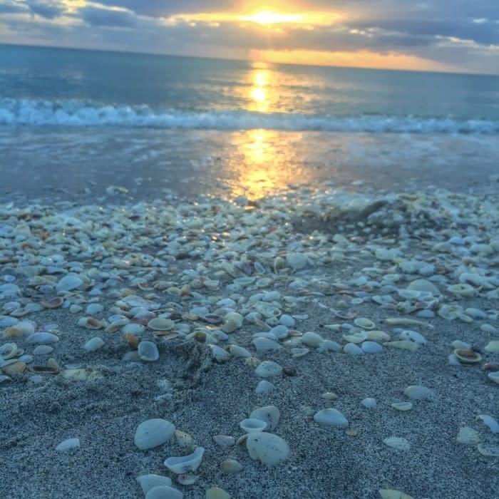 Stump Pass Sunset - Blog