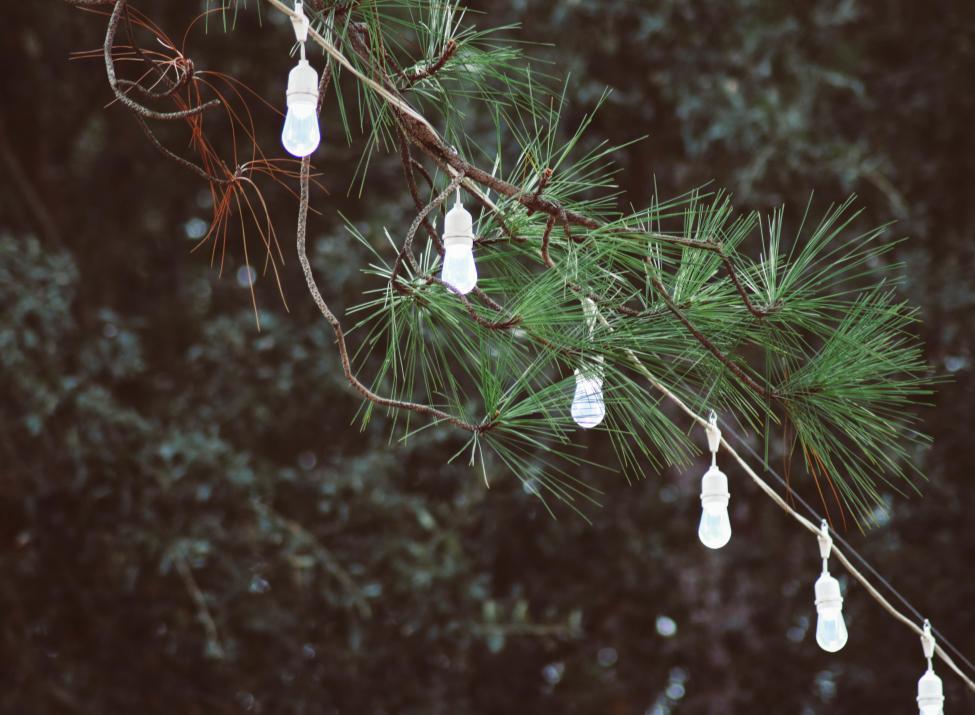 The Pines on Lake Granbury