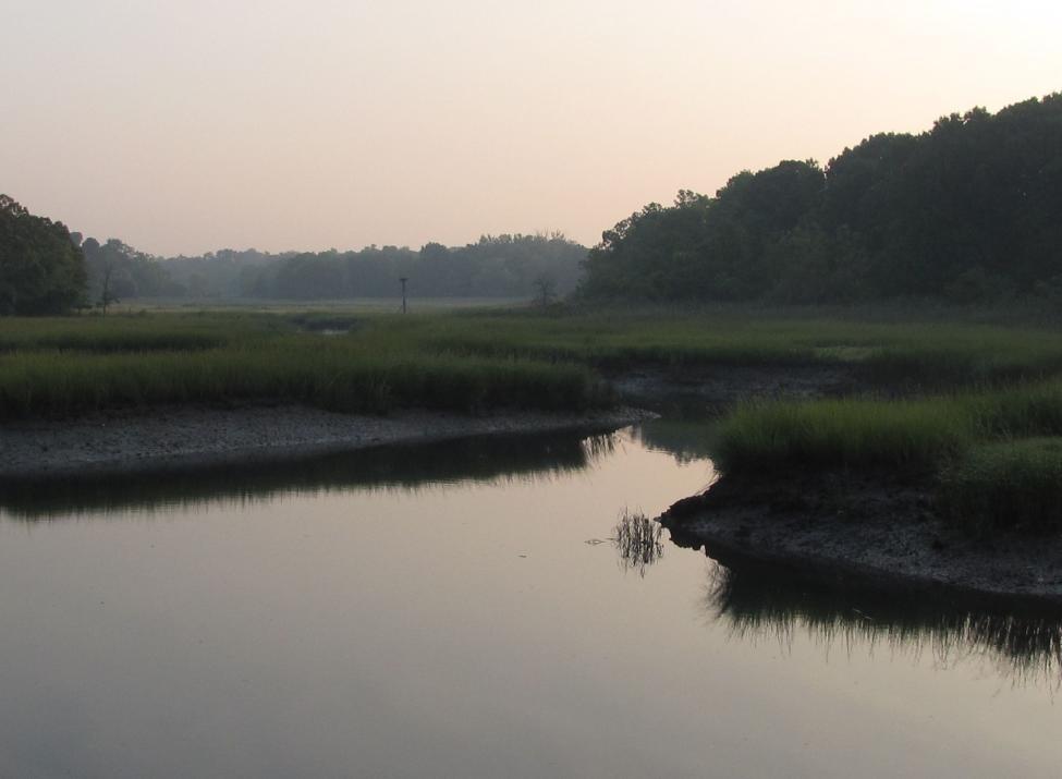 otter creek preserve