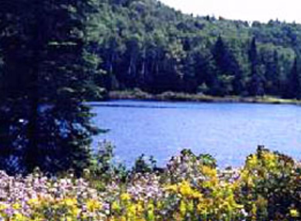 cranberry lake preserve
