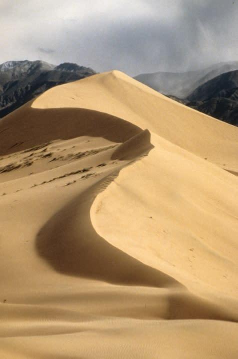 Ibex Sand Dunes