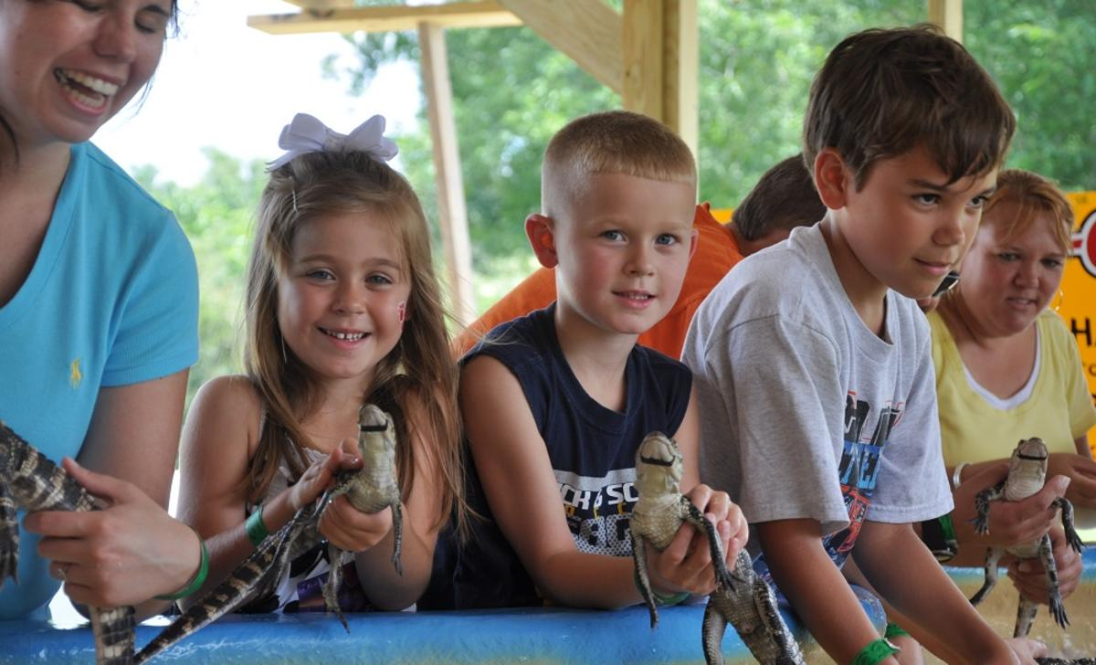 Kids holding baby gators at the touch pool at Insta-Gator Ranch & Hatchery